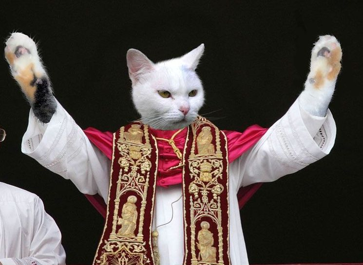 Pope Cat by ilovekarate from Worth1000.com