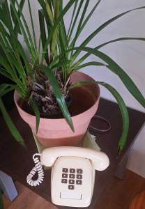 phoneplant